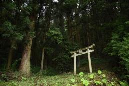 Shrine at Farmer's house